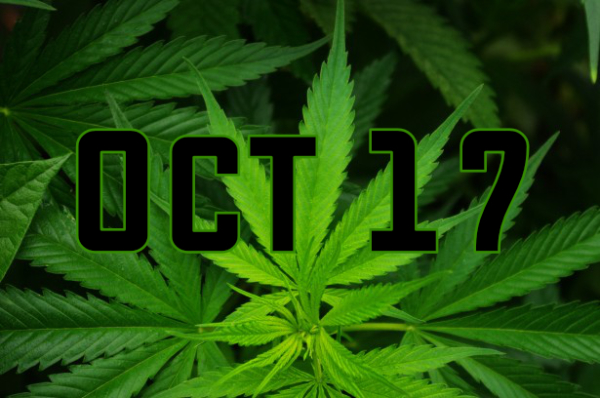 Cannabis in Halton - Everything you should know before Oct 17th